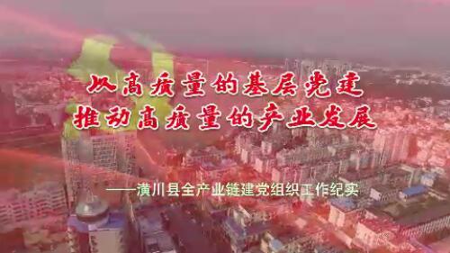 潢川县产业链建党组织汇报片