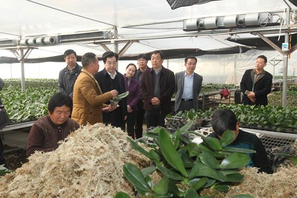 2018年3月,省扶贫办副主任汪继章(右三)来潢川县调研产业扶贫工作